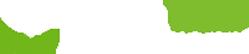 SDF - Un site utilisant WordPress